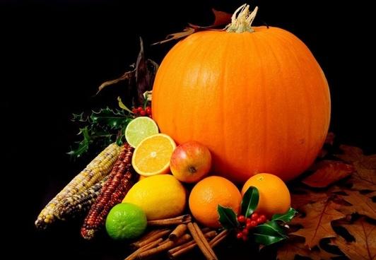 colorful fruits citrus