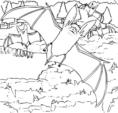 Coloring Book Ozark Big Eared Bat clip art