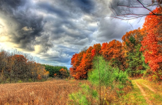 colors and sky on the hiking trail in southern wisconsin