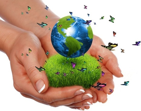 commercial environmental themes picture 04 hd pictures