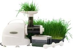 Compact wheatgrass juicer