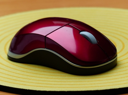 computer mouse computer input device