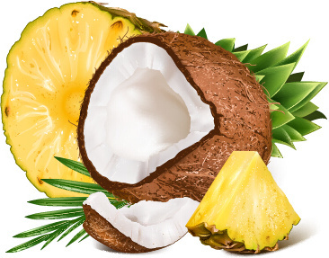 copra and pineapple design vector