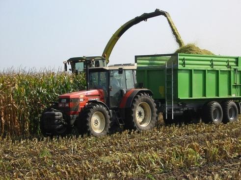 corn corn harvest tractors