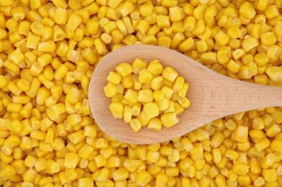 corn photo 04 hd picture
