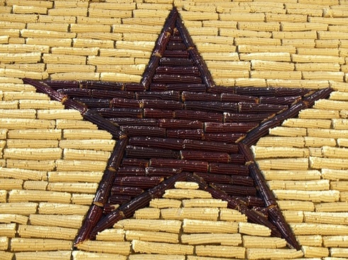 corn star mitchel