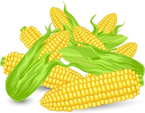 corns icon colored shiny 3d design