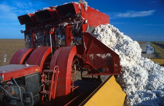 cotton harvester agriculture farm