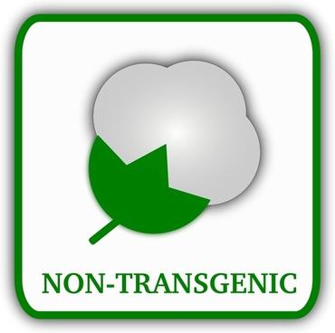 Cotton (non-transgenic)