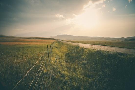 countryside cropland field fog grass grassland