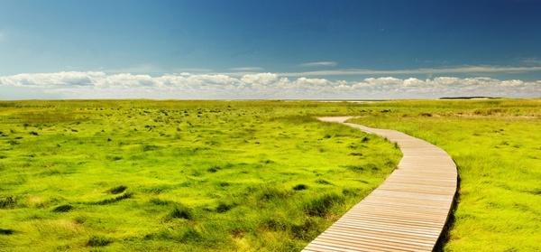 countryside daytime farm field grass grassland hill