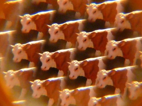 cows kaleidoscope art