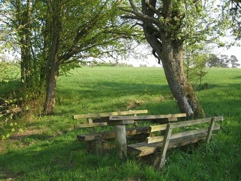cozy rest nature