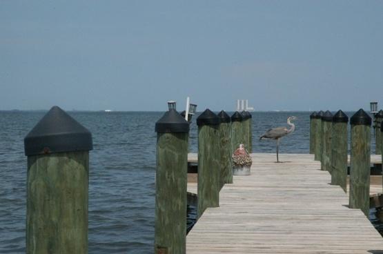 crane on a dock