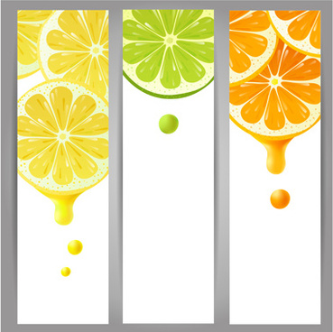 creative lemon vector banners set