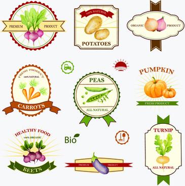 creative vegetables labels vintage vector