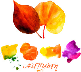 creative watercolor leaves autumn background vector