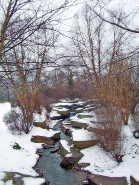 creek and snow