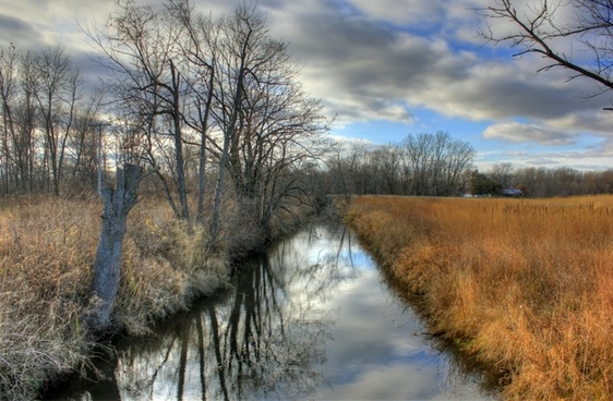 creek on other side at illinois beach state park illinois