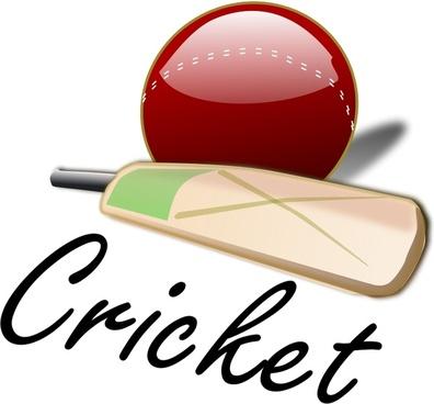 Cricket_03