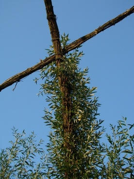 cross fouling climb