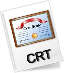 CRT File