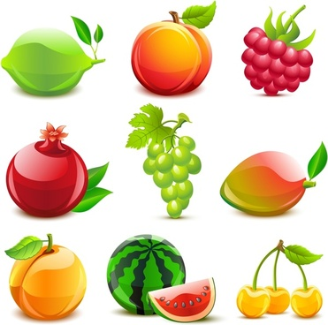 fresh fruits icons shiny colored modern sketch