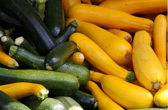 cucumber food vegetable