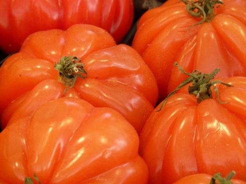 cuore di bue ox heart beefsteak tomato