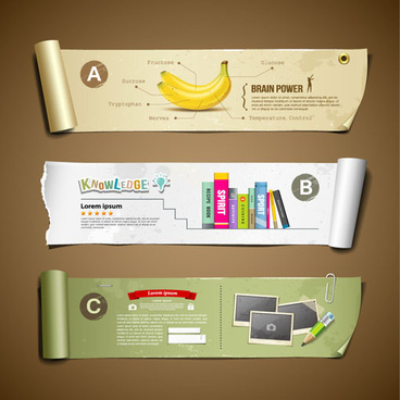 curled paper banner infographics vector