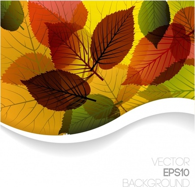 nature background template colorful flat blurred leaves decor