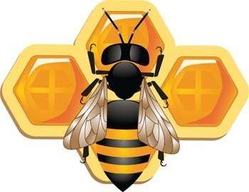 cute 3d bee and honeycomb vector