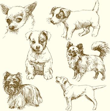 cute dog drawn vector
