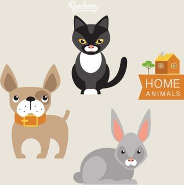 cute housepets illustration