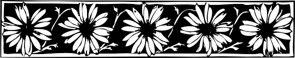 Daisy Border clip art