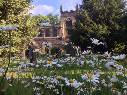 daisy church