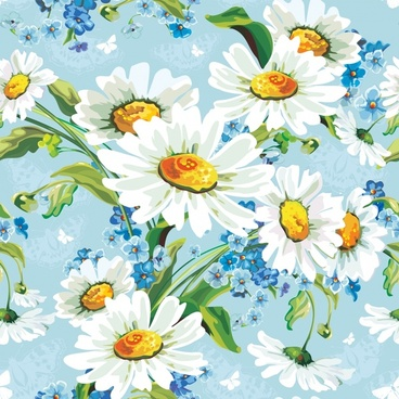 daisy flowers background vector