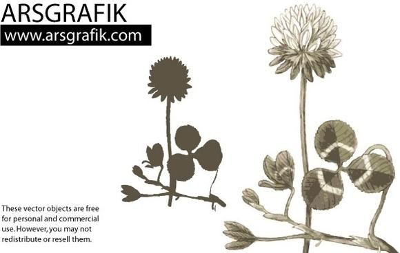 Dandelion Flower Vector