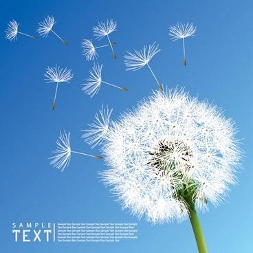 dandelion background flying objects elegant modern realistic design