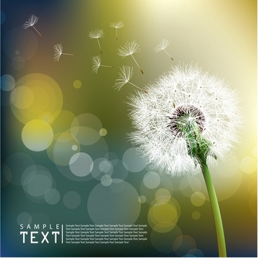 dandelion background realistic botany icon bokeh decor