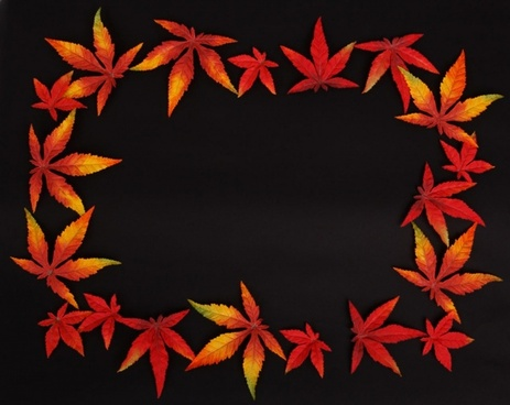 dark autumn leaf frame
