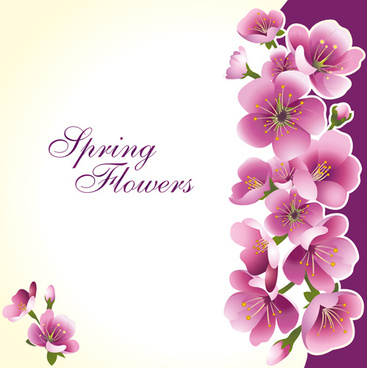 dark pink flower spring background set vector