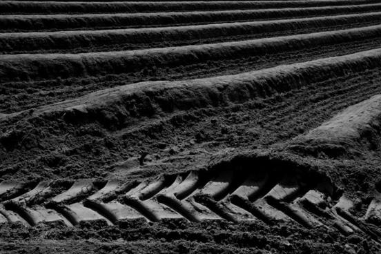 darmstadt field