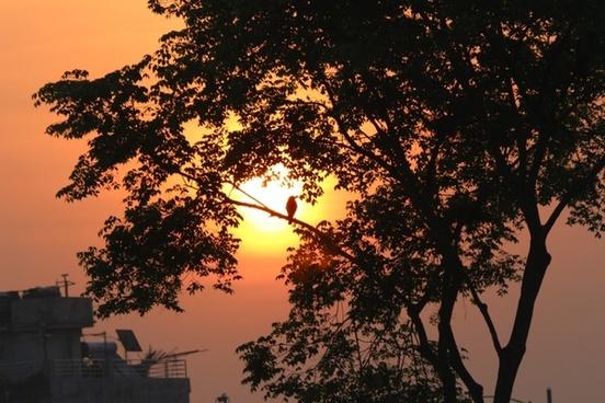 dawn sunrise morning