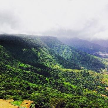 daytime environment fog forest hill landscape lush