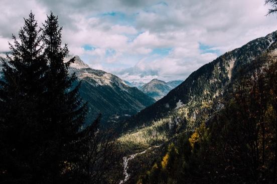 daytime forest hiking hill landscape majestic