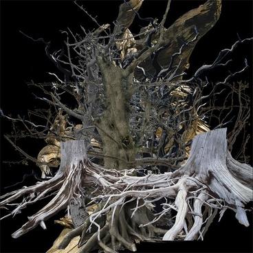 dead tree psd 2
