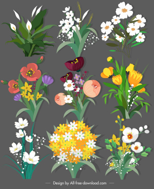 decorative botany icons colorful classical sketch