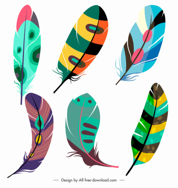 decorative feather icons colorful fluffy sketch