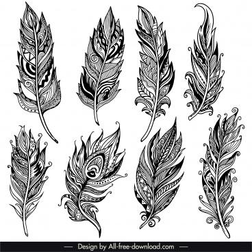decorative feather icons retro tribal decor handdrawn sketch